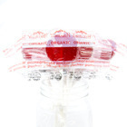 Pomegranate Pucker Lollipop