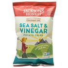 Salt & Vinegar Potato Chips