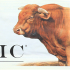 Epic Bar - Beef Apple Bacon - 1.5 oz Bars - Case of 12