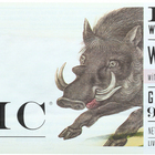 Epic Wild Boar Bar - Uncured Bacon - Case of 12 - 1.5 oz.